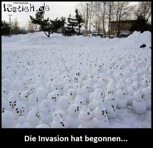 Eine eiskalte Invasion