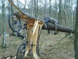 Fahrrad gegen Baum