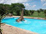 Urlaub in Afrika