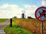 Windmühlen kämpfen