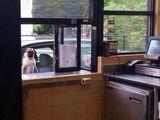 Darf ich bitte bestellen?