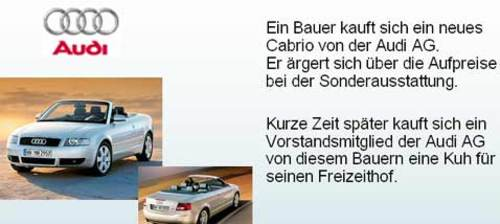 Audi und die Kuh