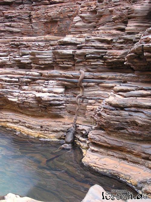 Baden in Australien