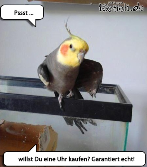 Vogeldealer