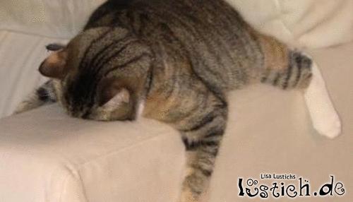 Ich und meine Couch