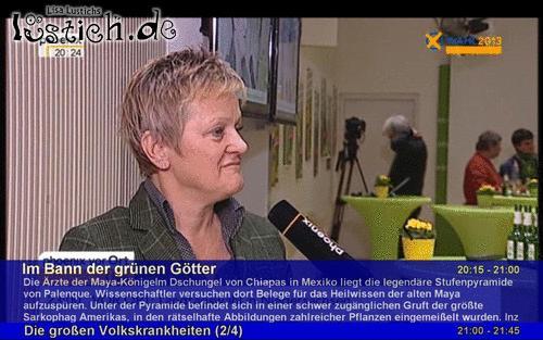 Phönix hat es erkannt - Wahl 2013