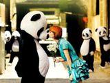 In A Panda's World