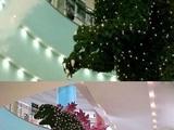 Weihnachtsbaum in Japan