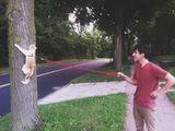Katze an der Leine