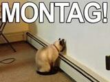 Es ist Montag