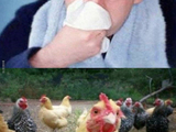 Hühnersuppe oder Aspirin