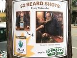 Beard Shots