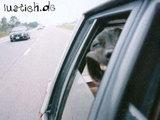 Grinsender Windhund